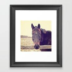Hello Horse  Framed Art Print