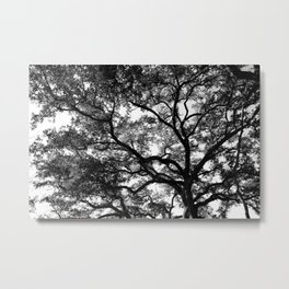 Lighted Tree Metal Print