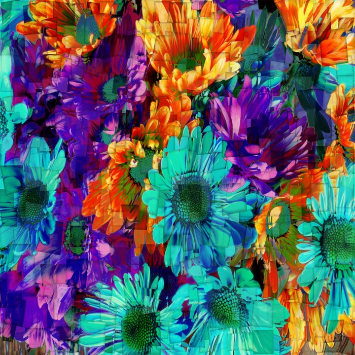 Colored Daisies Comforters