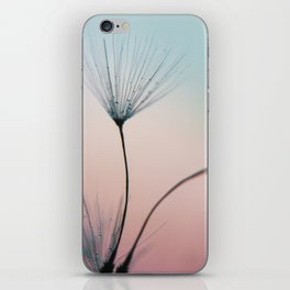 dandelion - sprinkles of love iPhone Skin