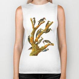 Maria's Woodpecker, Three-toed Woodpecker, Phillips' Woodpecker, Canadian Woodpecker, Harris's Woodp Biker Tank