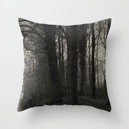 Winterscenery Throw Pillow