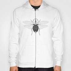 entomology 03. (i) Hoody