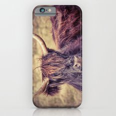 Long Horn Highland Cow Slim Case iPhone 6s