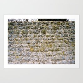 Mossy rock wall Art Print