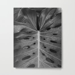 Botanical Leaf (Black and White) Metal Print