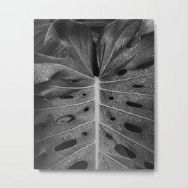Botanical Leaf (Black and White) Metal Print