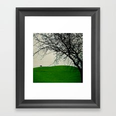 The Black Cow Framed Art Print