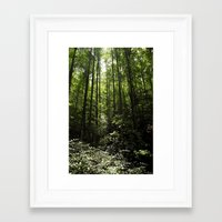 tennessee Framed Art Prints featuring Tennessee by shadow-of-light-imaging