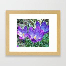 Purple Crocus Mosaic Framed Art Print