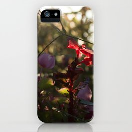 Caught in Red iPhone Case