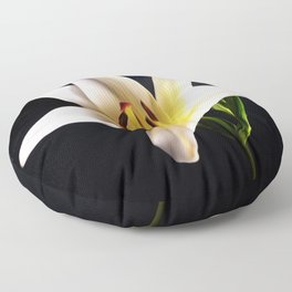 Single White Lily on black Floor Pillow