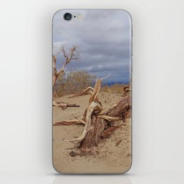 Death Valley II iPhone Skin