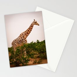 Too Tall for Camouflage (Niger) Stationery Cards