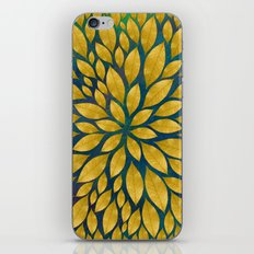 Petal Burst #18 iPhone & iPod Skin