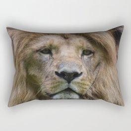 Lion 3 Rectangular Pillow