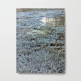 Turning of the Seasons Metal Print