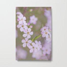 Breath of heaven - botanical Metal Print