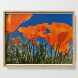 Poppies Flowers Serving Tray
