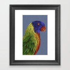 rainbow lorikeet  Framed Art Print