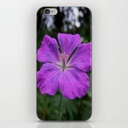 Violet Viola Flower With Garden Background  iPhone Skin