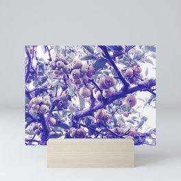 crabapples Mini Art Print