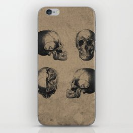 Skull View - Antique Vintage Style Medical Etching iPhone Skin