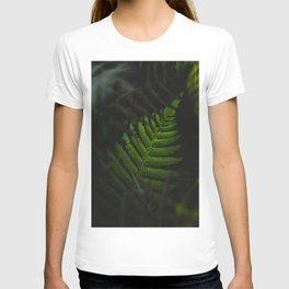 Secret Fern Leaf Shrouded in Darkness T-shirt