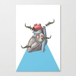 Shark at Heart Canvas Print