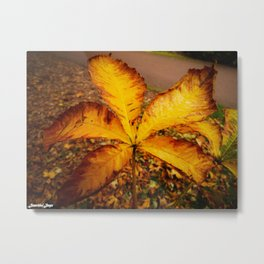October Rust Metal Print