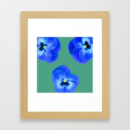 Trio de Viola tricolor Framed Art Print