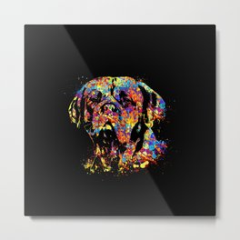 Colorful Dogue de Bordeaux Metal Print
