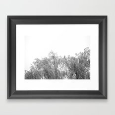 A tree and his crown in winter IV Framed Art Print