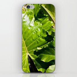 Elephant Leaves iPhone Skin