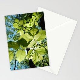 Sunlight Canopy V Stationery Cards