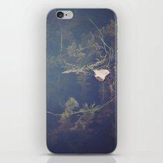 Murky Waters iPhone & iPod Skin