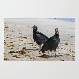 Black vultures on the beach Rug