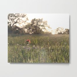 Saturday in Texas Metal Print