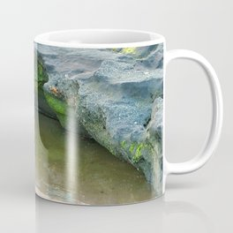 Moss on  rocks with puddle on the East Coast of Queensland, Australia Coffee Mug