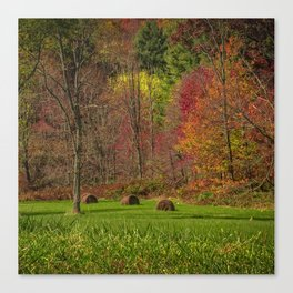 Lonely Bails of Color Canvas Print