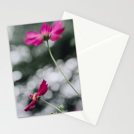 Cosmos flower III Stationery Cards