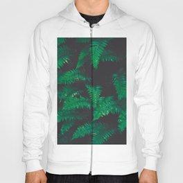 PNW Ferns Hoody