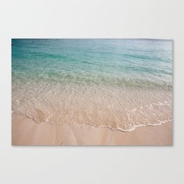 Paradise waters Canvas Print
