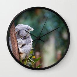 Sleeping soundly.  Wall Clock
