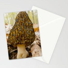 Black Morel Stationery Cards