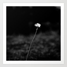 THE LAST FLOWER Art Print