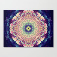 Cosmos Blossom Canvas Print