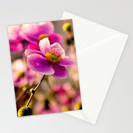 Japanese Anemone Stationery Cards