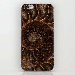Brown Ammonite iPhone Skin