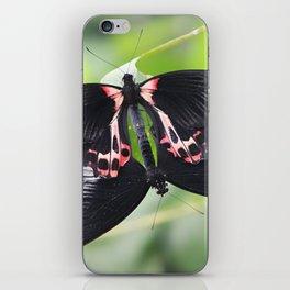 A Beautiful Moment in Nature iPhone Skin